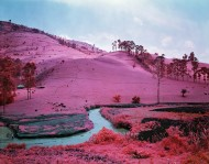 2012_09_13_richard_mosse_02