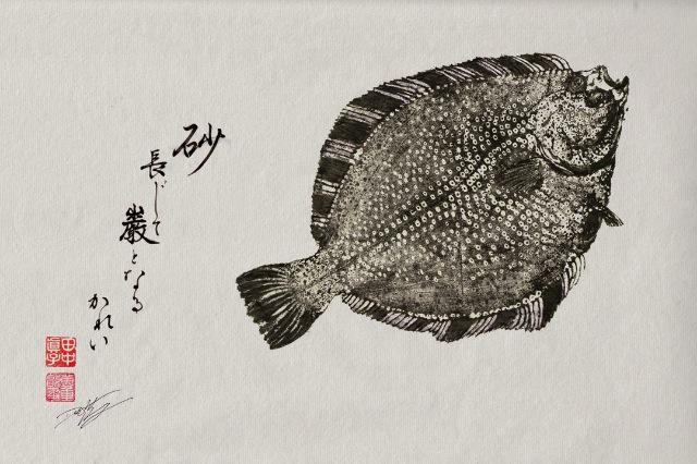 2013 04 09 dwight hwang Gyotaku 04 Dwight Hwang