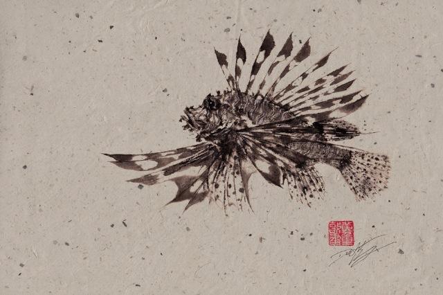 2013 04 09 dwight hwang Gyotaku 08 Dwight Hwang
