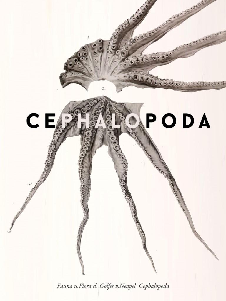 Poster 1 768x1024 Devin Vander Meulen