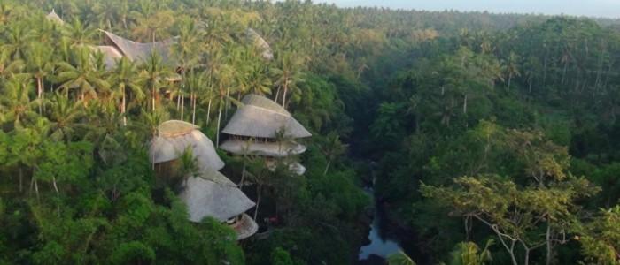 Ibuku - green village (12)