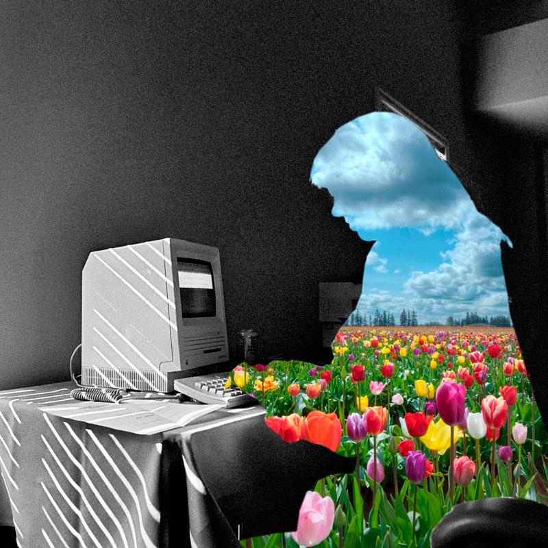 SLip collage digital disappear 8 SLip